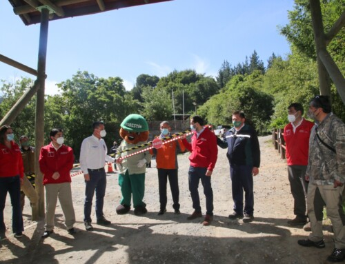 Reserva Nacional Nonguén reabrió sus puertas al público enfatizando la seguridad